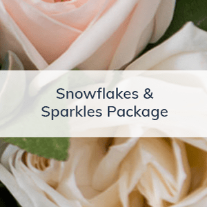 Snowflakes & Sparkles Package